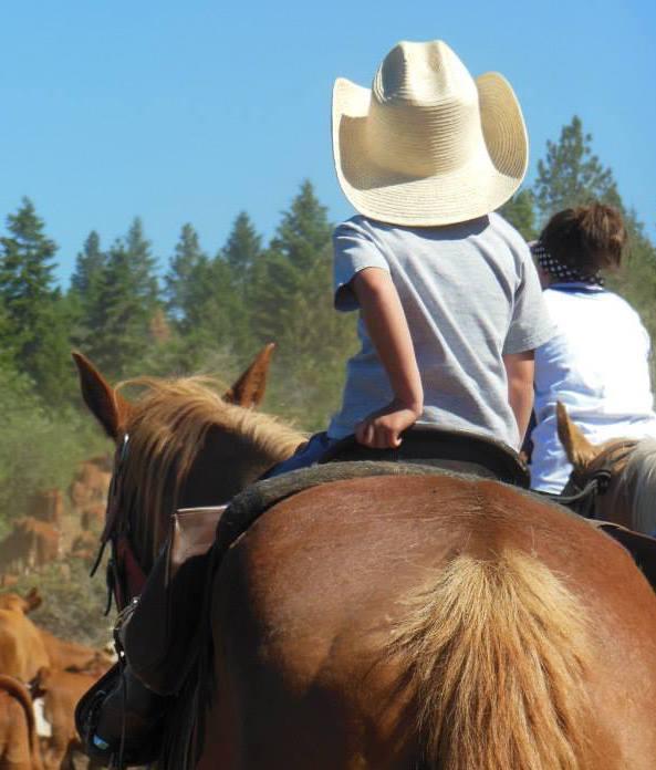 Pre-teen riding horse